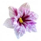 Stelata alb roz