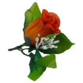Trandafir cu frunze rosu