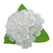Crizantemă mare cu frunze albă