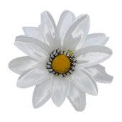 Model 3 alb