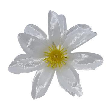 Model 6 alb
